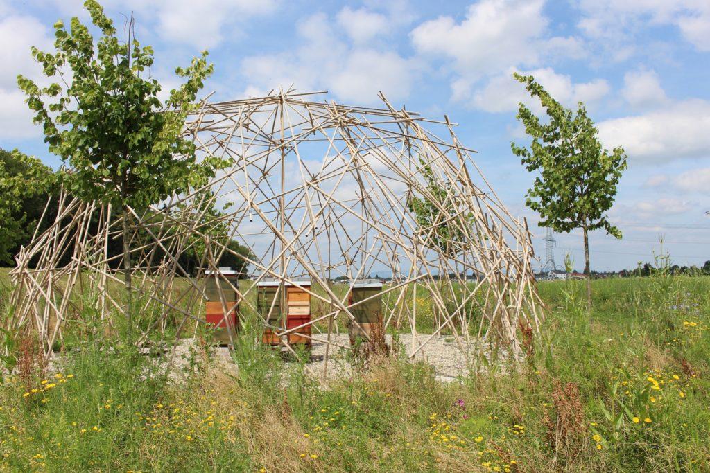 Der Bienenpavillon bietet eine Heimat für acht Völker mit je 50.000 Bienen.
