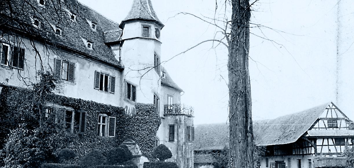 Das Schloss Balthasar mit dem Schlosspark