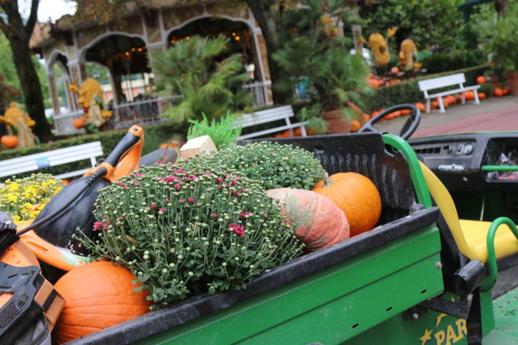 La saison d'Halloween est réellement un temps fort d'Europa-Park !