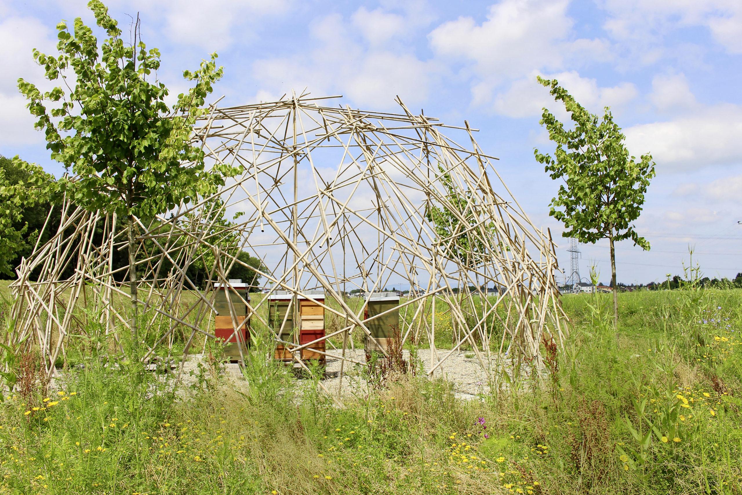 """Den Honig aus dem Bienenpavillon der Wasserwelt Rulantica gibt's im Erlebnishotel """"Krønasår""""."""